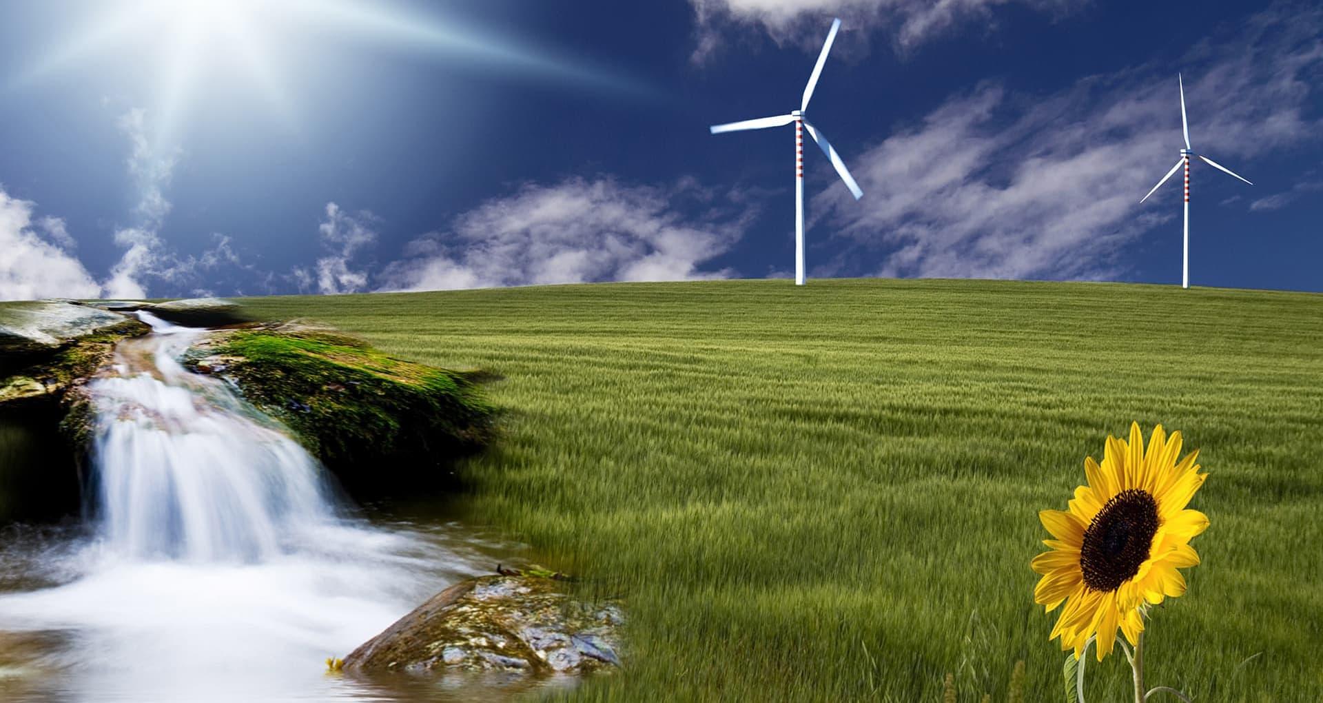 ökologische Finanzberatung in Norddeutschland