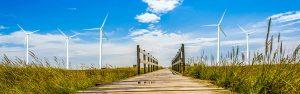 nachhaltige Investments, nachhaltige Geldanlage