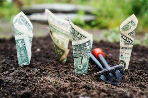 ökologische Kapitalanlage